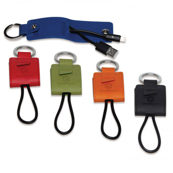 Donald. Key Ring/Charging Kit